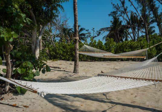 beach side hammocks under the palm trees