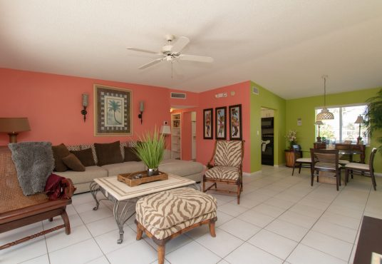 tropical color scheme living and dinning space