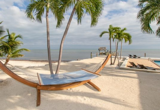 hammock in the sand under palm trees overlooking the atlantic ocean