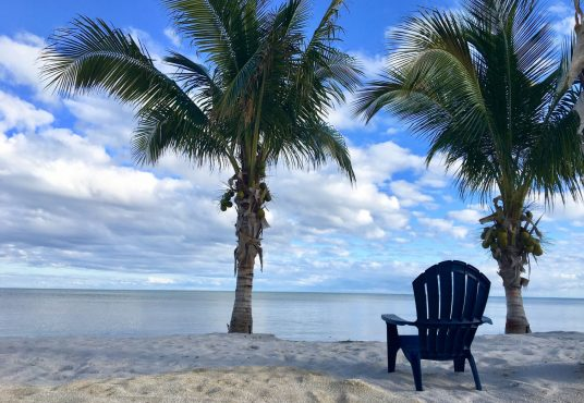 oceanfront private estate with sandy beach located on lower matecumbe key